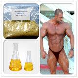 Очищенность Methenolone Enanthate CAS 99% высокая: 303-42-4 с быстрой поставкой