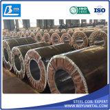 Enrouleur galvanisé plaqué en acier laminé en usine Dx51d avec une bonne qualité