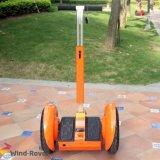Deux roues Auto l'équilibre de la mobilité électrique Scooter avec ce RoHS FCC