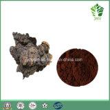 100% natürliche Chaga Pilz-Auszug-Polysaccharide 20%, 25%, 30%, 40%