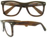 Blocco per grafici ottico degli occhiali dello spettacolo di stile dei blocchi per grafici di vetro di Eyewear di modo nuovo