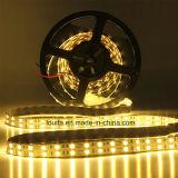 최고 밝은 두 배 줄 5050 LED 지구 빛