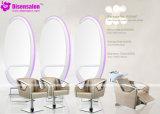 شعبيّة [هيغقوليتي] صالون مرآة [بربر شير] صالون كرسي تثبيت ([ب2005ف])