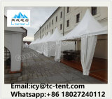 3X3m Beautiful Pagoda Tent 5m By5m with Canopy for Party Retardador de Chama