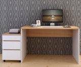 Tableau de bureau d'ordinateur d'école d'utilisation de meubles de Home Office (HX-5N476)
