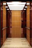 Elevatore/ascensore per persone con il driver Gearless di Vvvf della macchina della trazione