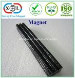 Schwarzer magnetischer runder Epoxidmagnet