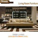 Verter el diseño moderno del sofá del pasillo
