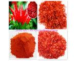 Heißer Verkaufs-Qualitäts-Export trocknete rotglühenden Paprika-Pfeffer/süsses Paprika-Puder/Flocken