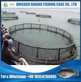 Gaiola personalizada da piscicultura da cultura aquática para Ghana