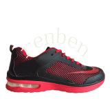 新しい販売の人の普及したスニーカーの偶然靴
