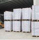 Papel de placa 350GSM da arte da fábrica de Chenming