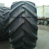 트랙터 후방과 정면을%s 농업 부상능력 편견 타이어