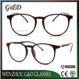 Het nieuwe Populaire Optische Frame T6017 van het Oogglas van Eyewear van de Mannequin Tr90