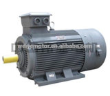 Zhejiang Weiye Yvf ajustable de la serie del motor eléctrico de velocidad de 50kw