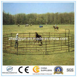 Comitato usato del Corral del cavallo del comitato della rete fissa del cavallo per la vendita poco costosa