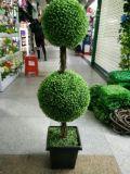 Plantas y flores artificiales del árbol Gu-Jys-200031 del boj