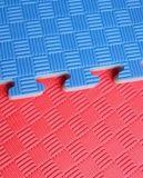 Stuoia rovesciabile della gomma piuma di EVA, mattonelle di collegamento della gomma piuma di EVA