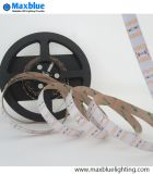 2835 alto Brightness 144LEDs/M Double Row LED Strip