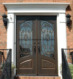 Portas exteriores vitrificadas do ferro feito do estilo dobro europeu