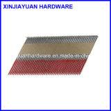 すね34度の鋼鉄組み立ての釘の中国の製造者滑らかにしなさい/リングの