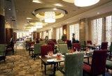 Hotel-Möbel/Gaststätte-Möbel/Gaststätte-Tisch und Stuhl (GLDN-019992)