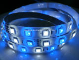 DC12V / 24V 72LEDs / M RGBW Rgbww LED Strip Light