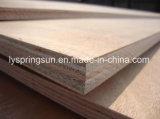Madera contrachapada comercial de /Cheap de la madera contrachapada 4X8