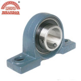 ISO Certificated Pillow Block Bearing met Competitive Price (UCP208)