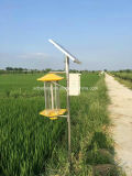 太陽Insecticidalランプの太陽害虫のキラーランプのカのキラーランプのための熱い販売