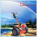Vehículo eléctrico personal del transporte del carro eléctrico de China
