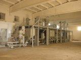 Sesam-Bohnen-Impuls-Korn-Startwert- für Zufallsgeneratorreinigungs-Pflanze (5X)