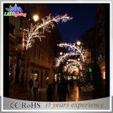 Luz de calle modificada para requisitos particulares de poste de la decoración de la Navidad de los diseños LED