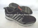 Les chaussures de sport (Ko-223)