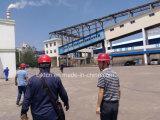 Tomada da produção do fertilizante orgânico da fábrica de China