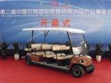 CER genehmigt das 11 Personen-elektrische Auto (Lt-A8+3)
