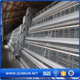 Cage de poulet de bonne qualité à Anping