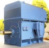 1750 kw 750rpm do motor elétrico AC