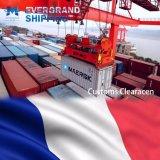Betrouwbare Oceaan & Overzees die van China aan Frankrijk/Parijs/Le Havre/Marseille verschepen