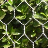 Шестиугольная сетка мелкоячеистой сетки ячеистой сети (фабрика ture)