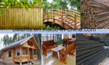 Vide Service OEM de transformation du bois en autoclave avec une haute qualité