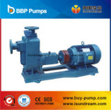 ZW-SelbstPirming Abwasser-Pumpe