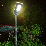 rue de 15W DEL/lumière solaires Integrated de jardin pour l'éclairage extérieur