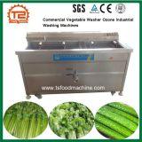 De commerciële Plantaardige Industriële Wasmachines van het Ozon van de Wasmachine