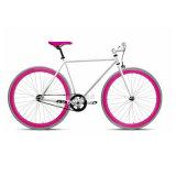 2016 Fashionable City Fixed Gear Bike com moldura de aço Hi-Ten