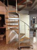 단단한 오크 계단 보행을%s 가진 현대 디자인 똑바른 유리제 계단