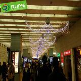 Éclairages LED personnalisés par lumière de rideau en DEL pour la décoration de guichet de l'usine