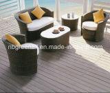 Insieme di vimini del giardino della mobilia