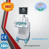 Digital Video colposcopio Ginecología Yj-U150