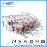 Cassa di gestazione della cassa del maiale della strumentazione di azienda agricola del maiale